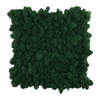 Preserevd Moss Panel-Dark Green